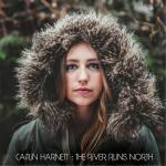 1413020315_caitlin-harnett-the-river-runs-north-2014