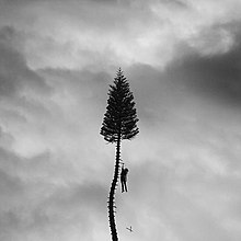 220px-Manchester_Orchestra_-_A_Black_Mile_to_the_Surface